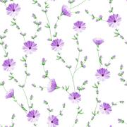 Stock Illustration of Chicory pattern.