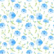 Chicory seamless pattern. - stock illustration