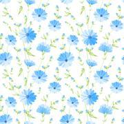 Stock Illustration of Chicory seamless pattern.