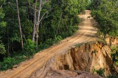 landslide dirt road - stock photo