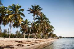 playa larga beach, bay of pigs, matanzas, cuba. site of the american invasion - stock photo