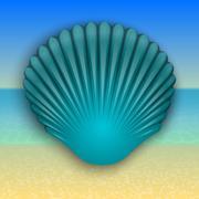 Vector blue shell illustration on the summer sea beach - stock illustration