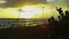 Sunset Over Peaceful Shoreline Ocean Waves Stock Footage