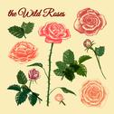 Stock Illustration of the wild roses - hand drawn illustrations