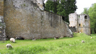 Stock Video Footage of Beaufort castle consists of the ruins of the medieval fortress.