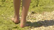 Stock Video Footage of Feet of a young girl walking on shells and green algae along the sea