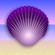 Vector purple shell illustration on the summer sea beach - stock illustration