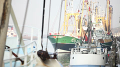 Workmen in harbor - stock footage