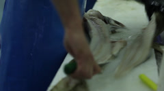 Filleting Fish Stock Footage