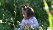 Stock Video Footage of Children playing in the field.Boy with a girl playing on the meadow.