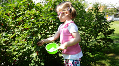 Little girl picking currant Stock Footage