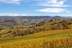 Autumnal view of vineyards in piedmont, italy. Stock Photos