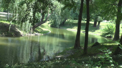 River flowing slowly into forest, green trees, flying birds, wonderful nature Stock Footage