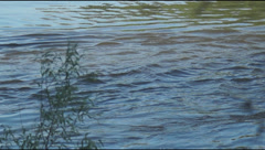 Water Desna River Stock Footage