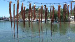 Pan from Squid drying in limenaria harbor Thassos Greece Stock Footage