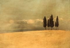 vintage tuscan landscape - stock illustration
