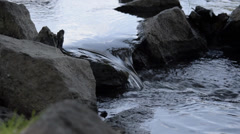 Small River (Creek) and Stones Stock Footage