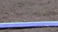 Long jump Stock Footage