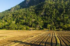 New ploughed field.in front of a mountain in thailand. Stock Photos