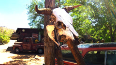 Cattle Skull On Post With Old Cars Slow Zoom Stock Footage