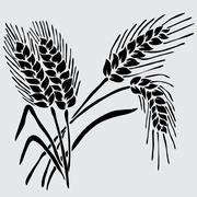 Stock Illustration of floral decoration with wheat, for invitations, cards, banners