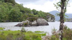 Small Island in Lake Surrounded by Lush Forest Stock Footage