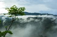 Stock Photo of view of forest on morning mist at tropical mountain range after rain fall.