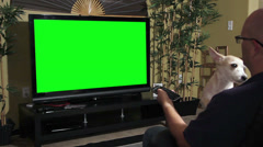 Man watching television with a dog greenscreen Stock Footage