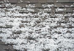Hail on the roof. after heavy storm with hail. roof closeup. Stock Photos
