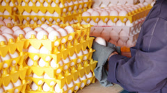 Cleaning fresh eggs Stock Footage