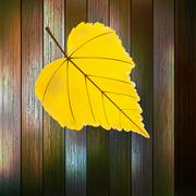 Autumn Leaves over wooden background. EPS10 Stock Illustration