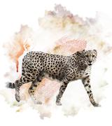 watercolor image of cheetah - stock illustration