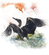 watercolor image of  double-crested cormorant - stock illustration
