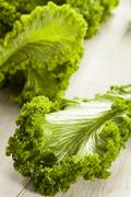 Organic raw mustard greens Stock Photos