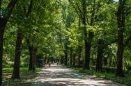Stock Photo of People Walking In Herastrau Park On Summer Day