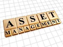 Asset management in golden cubes Stock Illustration