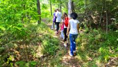 Hiking family in forest, macedonia. hikers walking among trees. multi-racial Stock Footage