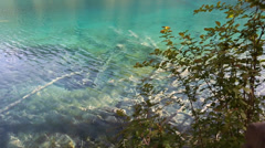Lake in jiuzhaigou valley national park in china dolly shot Stock Footage