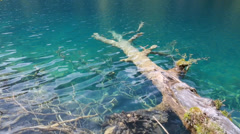 A beautiful lake in jiuzhaigou valley national park in china dolly Stock Footage