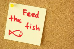 feed the fish remind sticker on cork - stock photo