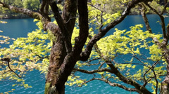 Beautiful forest lake in jiuzhaigou valley national park in china Stock Footage