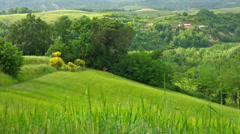 Summer nature landscape, green hills of Tuscany, Italy. Stock Footage