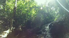 HD Tilt Down waterfall in deep forest, Phuket South of Thailand Stock Footage