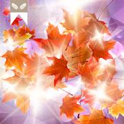Stock Illustration of Abstract autumn illustration with maple Leaves.