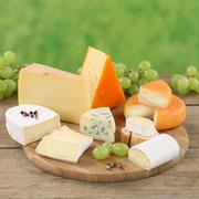 Plate with camembert, gouda and swiss cheese Stock Photos