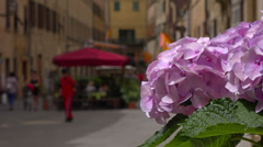 Italy, Tuscany, on ancient streets of Volterra. Selective focus on foreground. Stock Footage