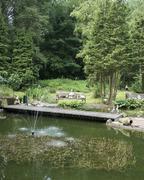 English garden with pond Stock Photos