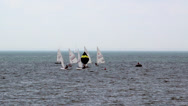 Stock Video Footage of Sailboats on the lake
