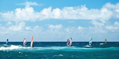 windsurfers in windy weather on maui island panorama - stock photo
