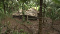 Jungle bungalo Stock Footage